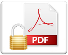 Secure PDF Viewer, ebook security, ebook piracy, ebook protection, piracy protection software